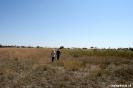 Onkovango Delta - wandelen door de delta