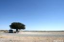 Onderweg op de Kalahari