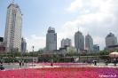 Xining - bloemetjes