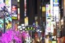 Tokyo - Shunjuku neon