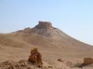 Palmyra - Het kassteel op de heuvel