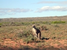 WA - Exmouth, Ningaloo National Park