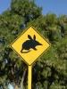 WA - Pas op voor de woelmuis!