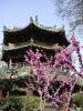 Xian - Mooie plekje's in de oude moslimwijk van Xian