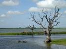 Mandalay - Vissers bij de U-bein brug