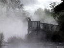 Rotorua - vulkanisch gespook!
