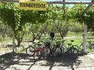 Mendoza - op de fiets