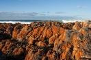 Freycinet Peninsula - Friendly beach