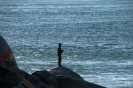 St.Helens - vissen in zee