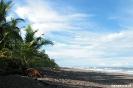 Torteguero - strand achter guesthouse