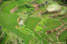 Rijstterrassen bij Maligcong